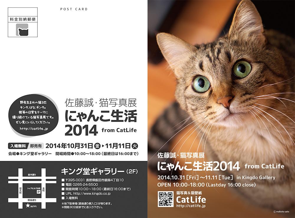 佐藤誠・猫写真展「にゃんこ生活2014 from CatLife」のご案内