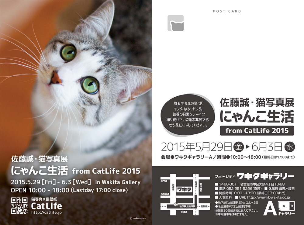 佐藤誠・猫写真展「にゃんこ生活2015 from CatLife」のご案内