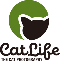 猫写真&猫壁紙 CatLife